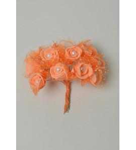 Rose coloris orangé