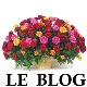 blog carrefour ceremonie